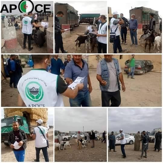 حملة تحسيسية بسوق المواشي مكتب المسيلة  - المنظمة الجزائرية لحماية و ارشاد المستهلك و محيطه