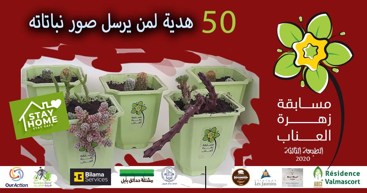 أكثر من 50 هدية مخصصة لمن يرسلون صور نباتاتهم المنزلية بعنابة - GREEN BIKE