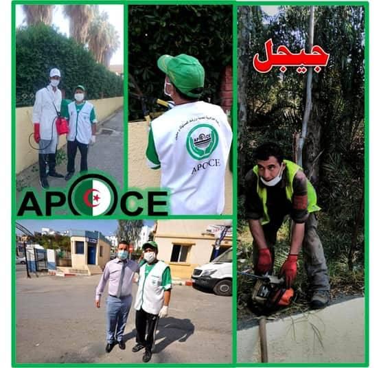 بستنة وتنظيف محيط مستشفى جيجل - المنظمة الجزائرية لحماية و ارشاد المستهلك و محيطه